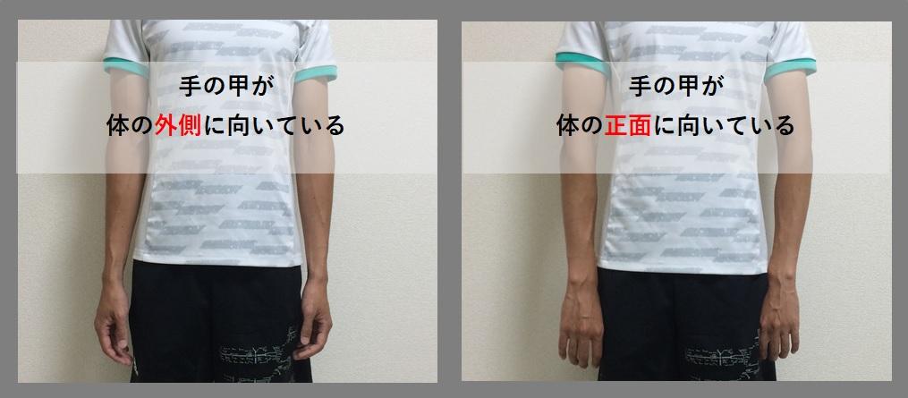 トレ 筋 巻き 肩